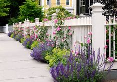 These tips for creating plant combinations in your yard will help make your garden landscaping look beautiful. Great ideas for updating your garden design with beautiful flowers, bushes and perennials. Picket Fence Garden, Garden Fencing, Garden Beds, White Picket Fences, White Garden Fence, White Fence, Low Maintenance Garden Design, Stipa, Gardens