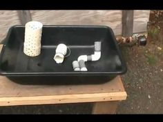 Small Aquaponic System With A Bell Siphon