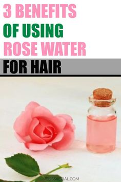The benefits of using rose water on your natural hair for growth #rosewater #hairgrowth Natural Hair Growth Tips, Natural Hair Types, Hair Remedies For Growth, Natural Hair Care, Increase Hair Growth, Hair Care Routine, Rose Water, Healthy Hair, African Americans