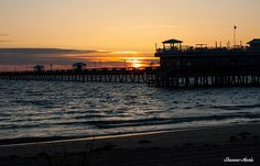 Norfolk Beach ~Norfolk, VA Norfolk Beach, Norfolk Virginia, Shenandoah National Park, Personal History, Colonial Williamsburg, Hampton Roads, Virginia Beach, Amusement Park, Vacation Spots