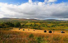 Aughacashel and Sliabh An Iarainn Mountain. Irish Roots, Irish Blessing, Luck Of The Irish, Emerald Isle, Travel Posters, Imagination, Scotland, Ireland, To Go