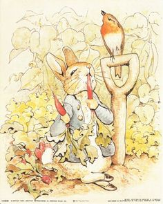 Absolutely Wow! Add this beautiful piece of art into your home, it would surely bring distinctive touch and transform any room into an exotic beautiful place. This poster depicts the image of Peter Rabbit who is seen here munching on some delicious-looking orange carrots and nearby a robin sits on the handle of a hoe, perhaps acting as lookout for the angry farmer is sure to grab lot of attention.