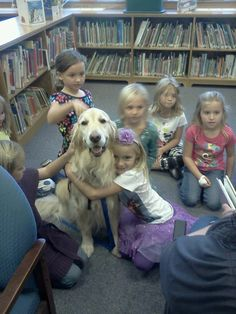 Ladel Comfort Dog getting (and giving) some comfort! #k9comfortdogs #dogs