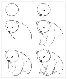 Easy drawings of bears easy drawings doodle drawings easy animal drawings polar bear cartoon polar bears . Doodle Drawings, Easy Drawings, Drawing Sketches, Pencil Drawings, Sketching, Drawing Lessons, Drawing Techniques, Polar Bear Drawing, Tracing Pictures