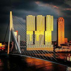 Rotterdam...Mooi plaatje....L.Loe