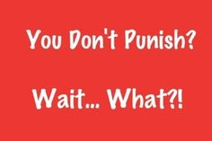 You Don't Punish Your Kids? What?!?! - This is our parenting strategy in a nutshell. So far the results have been great. Read the comments too!