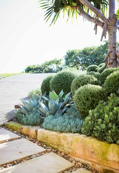 A headland garden with hardy succulents and low-maintenance plants - Design Jardin Low Maintenance Landscaping, Low Maintenance Plants, Long Blooming Perennials, Sun Perennials, Dry Garden, Terrace Garden, Garden Beds, Garden Paths, Garden Art
