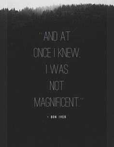 And at once I knew I was not magnificent.
