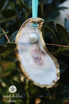 Items similar to Oyster Shell Ornaments - Set of THREE Hand Painted Metallic Gold Christmas Ornaments for Coastal Christmas Decorations - Beachy Christmas on Etsy Seashell Christmas Ornaments, Coastal Christmas Decor, Personalized Christmas Ornaments, Beach Christmas, Diy Ornaments, Holiday Decorating, Christmas Ideas, Christmas Decorations, Oyster Shell Crafts
