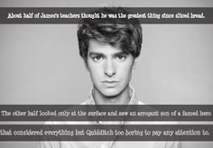 About half of James's teachers thought he was the greatest thing since sliced bread. The other half looked only at the surface and saw an arrogant son of a famed hero that considered everything but Quidditch too boring to pay any attention to. Harry Potter Imagines, Harry Potter Theme, Harry Potter Facts, Harry Potter Quotes, Harry Potter Books, Harry Potter Fandom, Harry Potter World, Harry Potter Next Generation, James Potter