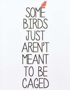Some birds just aren't meant to be caged.