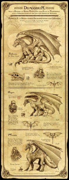 Dragonkin by Feliche
