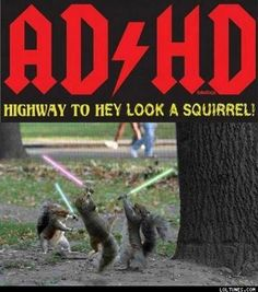 Highway To Hey Look A Squirrel!