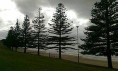 Se a beleza está nos olhos de quem vê Não vai ser meia dúzia de nuvens carregadas que vão tirar o brilho de tudo o que eu vivo.  #nofilter #semfiltro #lorne #australia #beach #greatoceanroad by thiqueijo