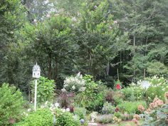 Last year I posted a project that I did to help our TV dish blend in more with my garden flower and shrub border. It really made me grit my teeth every time I l…