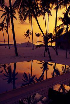Sunset over the ocean + palm trees. Beautiful Sunset, Beautiful World, Beautiful Places, Beautiful Pictures, Trees Beautiful, Beautiful Lights, Sunset Beach, Hawaiian Sunset, Summer Sunset