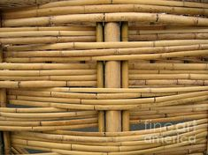 bamboo and wood shingles Bamboo Roof, Bamboo House, Bamboo Wall, Eco Buildings, Ancient Buildings, Bamboo Architecture, Vernacular Architecture, Materials And Structures, Building Materials