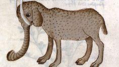 Encore un éléphant médiéval