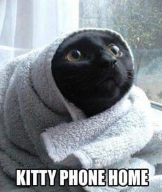 Kitty ET