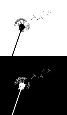 PSD Dandelion Silhouettes with Flying Seeds - Free PSD Files