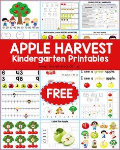 Free Apple Theme Kindergarten Printables - 1+1+1=1 Kindergarten Activities, Fun Activities, Apple Theme, Animals That Hibernate, Yellow Apple, Apple Harvest, Phonological Awareness, Autumn Theme, Early Learning