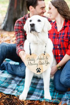 Engagement Photo Sign For Dogs Daddy asked and Mommy by Canleo