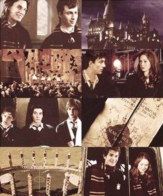Find images and videos about harry potter, sirius black and james potter on We Heart It - the app to get lost in what you love. Arte Do Harry Potter, Yer A Wizard Harry, Harry Potter Universal, Harry Potter Fandom, Harry Potter World, Hogwarts, Scorpius And Rose, Lily Evans, Remus Lupin