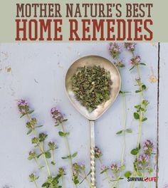 Mother Nature's Best Home Remedies -By Natalie Rhea on April 8, 2014