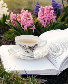 not much better in life than a good book and a cup of tea! (unless it was a mug of tea...)