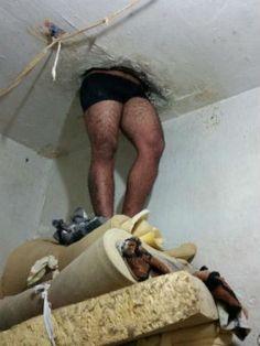 Detento fica enroscado em teto de delegacia no Paraná após tentar fugir +http://brml.co/1EIU6ue