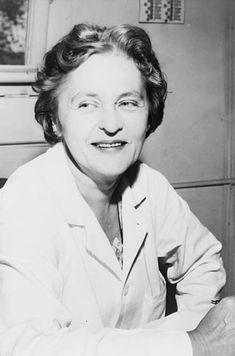 La docteure Maria Telkes, physicienne et pionnière dans l'énergie solaire, s'est associée avec une autre femme, l'architecte Eleonor Raymond, pour construire la première maison entièrement chauffée par l'énergie solaire en 1947.