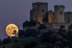Photographs from around the world captured the biggest and brightest full moon in nearly 70 years on Sunday and Monday nights.  Photographer captured the gleaming orb as it rose behind the Castle of Almdóvar in Córdoba, southern Spain, on Sunday.