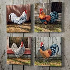 "ROOSTER WRAPPED CANVASES ~  Colorful roosters transform into delightful artistry on your wall. Set of four separately wrapped canvases allow you to adjust your decor anytime you like. Open editions. 10-1/2"" x 10-1/2"" wrapped canvases."