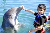 Los niños del #CENDI #LaPaz Ganadores del Concurso de #Cabo Town y Dolphin Discovery. - #LosCabos