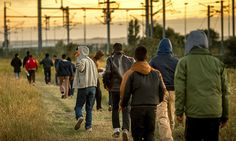 Despite the hysteria, the number of refugees in the UK has actually fallen by 76,439 since 2011. That's according to Britain's Refugee Council, which crunched the numbers gleaned from UN data and found that the number of refugees in the UK fell from 193,600 to 117,161 in the past four years. By comparison, the proportion of refugees housed by developing countries in the past 10 years has risen, according to the UN, from 70% to 86%. Britain could be doing far more.