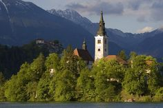 SLOVENIA: Bled Island church,   John Elk III Lonely Planet Photographer  © Copyright Lonely Planet Images 2011