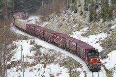 "DD51プッシュプルでは最後の峠越となるのか。 ""石北臨貨""の通称で知られる石北本線の臨時貨物列車が、4月19日で今シーズンの運行を終了した。北海道内の貨物列車ではDD51唯一の定期的な仕業であったが、今シーズンの運行終了ともに貨物列車の運行から引退となる見込みだ。石北臨貨の来シーズンの運行も正式に発表されていないが、運行されれば来季は牽引機がDF200のプッシュプルに変更になると思われる。  /石北本線 生田原―金華 26.04.19 Ishihara Kouji.jpg"