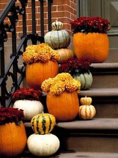 Lajoiedesfleurs.fr citrouille halloween fleurs vase