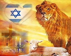 Lion Of Judah, My Prince, My King, No One Loves Me, First Love, Animals, Dios, Animales, Animaux