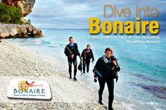 Have you entered to win a #FREE trip to #Bonaire yet? http://ow.ly/az5Vx