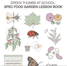 SPEC's new garden education curriculum.  Very accessible, well-designed and laid-out!  Lots of hands on activities with hand outs and clear instructions.  http://www.spec.bc.ca/Resources/Documents/Food/WEB_July18_lesson_book.pdf