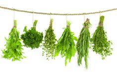 Tipos y usos de diferentes hierbas y especias