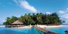 Angsana Ihuru Island Resort #voyagewave #themaldives → www.voyagewave.com