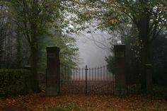 I would love to go for a stroll down this road. I can just picture a Jane Austen or Dickens character walking towards me out of the fog...