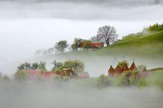 Vis de dimineață, plin de dulce ceață