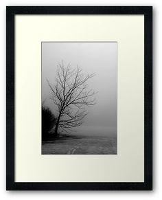 Framed print of tree in fog