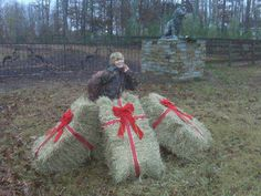 Farm/country Christmas decor. Our old hay bales with ribbon. You can get really creative with displaying. After the season simply pack your ribbons with the rest of your decor and use the hay to cover seed planting for spring.