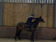 Kauto Star by any ot...