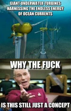 LOL Pic 2014 Why the fuck. get more of the funny why the fuck memes and lol pics 2014 from here. Save Our Earth, Funny Memes, Jokes, That's Hilarious, Lol, We Are The World, Faith In Humanity, Climate Change, Professor