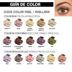 Guía de color para ojos miel o avellana #ojos #eyeshadow #sombras ...